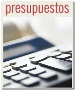 PRESUPUESTOS MUNICIPALES PARA 2009